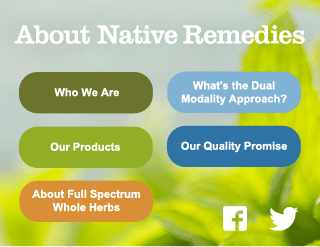 Natural Herbal and Homeopathic Products to Promote Holistic